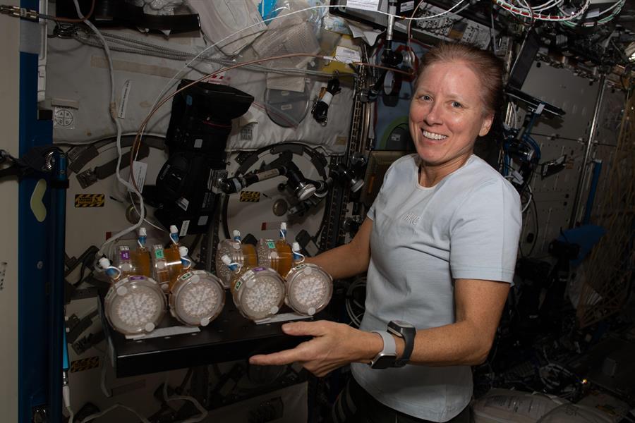 Misión conjunta de la NASA y SpaceX