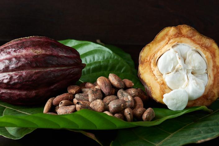 Cacao varios
